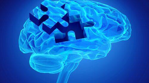 cerebro-com-peca-de-quebra-cabeca